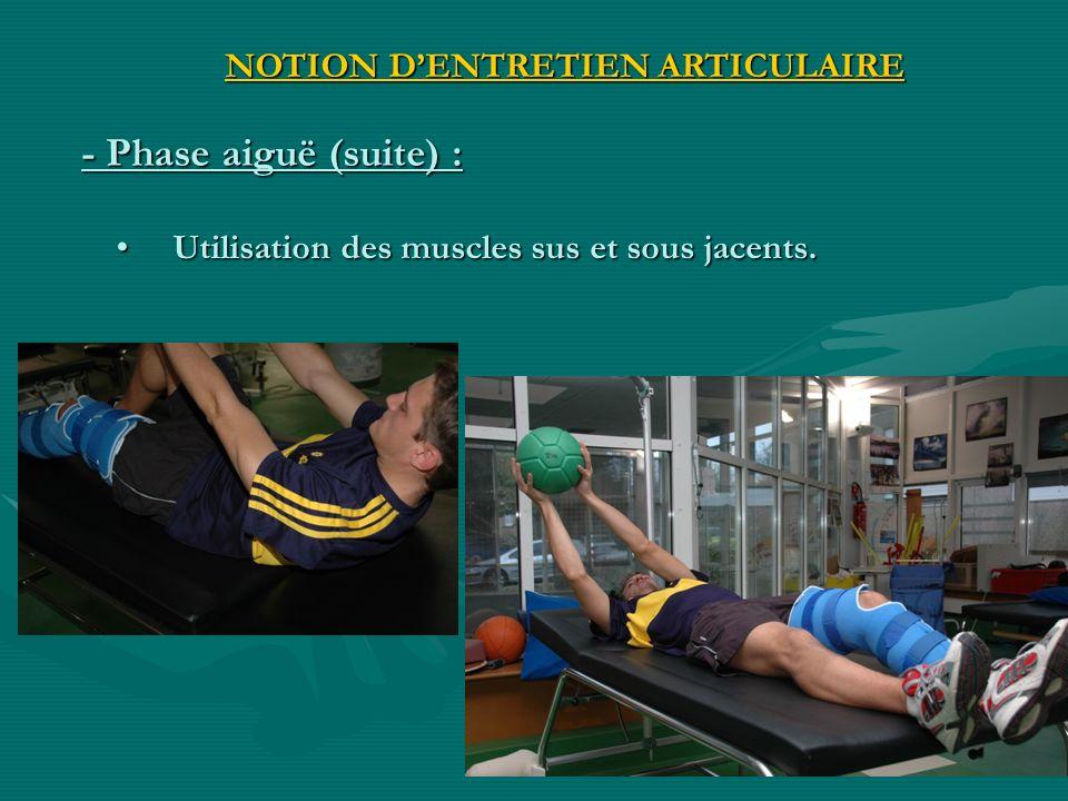 Utilisation des muscles sus et sous jacents.