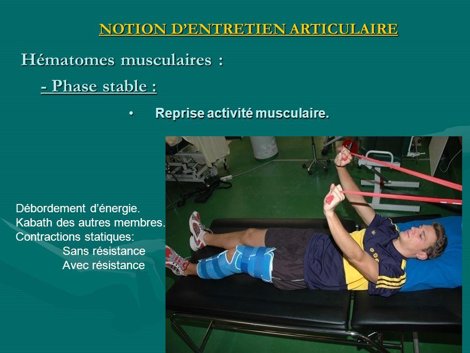 Reprise activité musculaire.