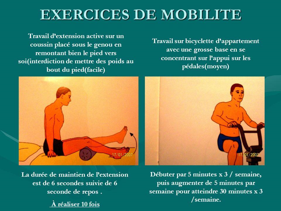 EXERCICES DE MOBILITE