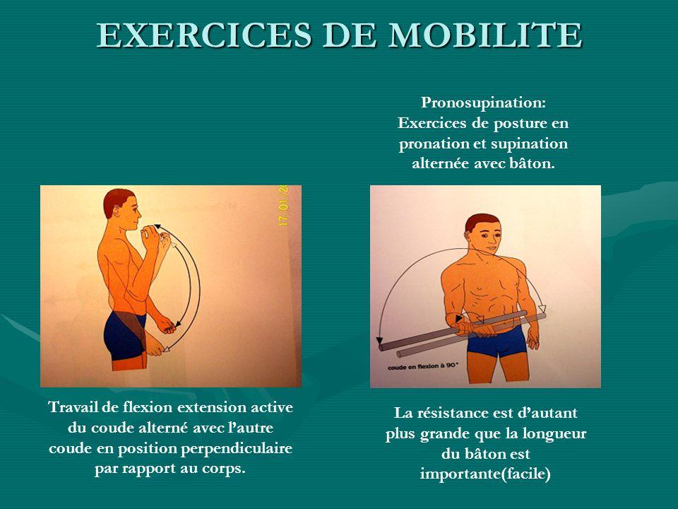 Exercices de posture en pronation et supination alternée avec bâton.