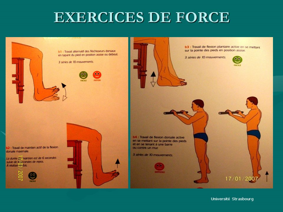 EXERCICES DE FORCE Université Strasbourg