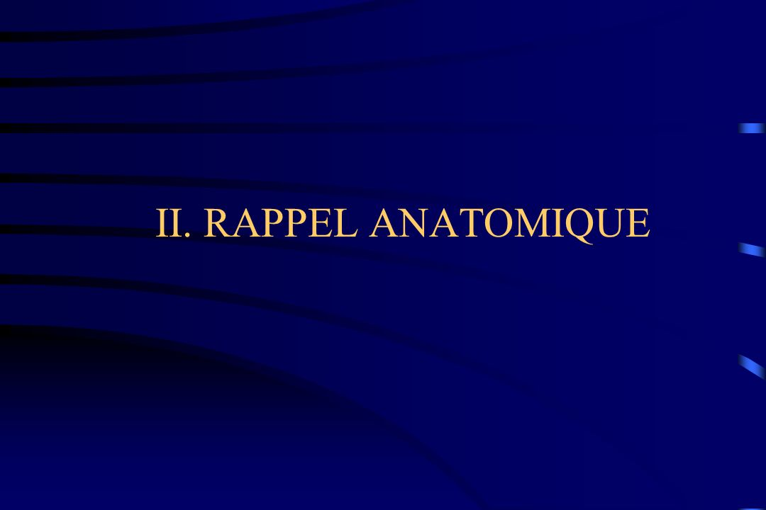 II. RAPPEL ANATOMIQUE