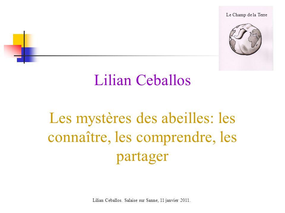 Lilian Ceballos. Salaise sur Sanne, 11 janvier 2011.