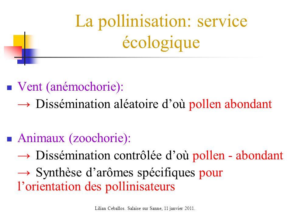 La pollinisation: service écologique