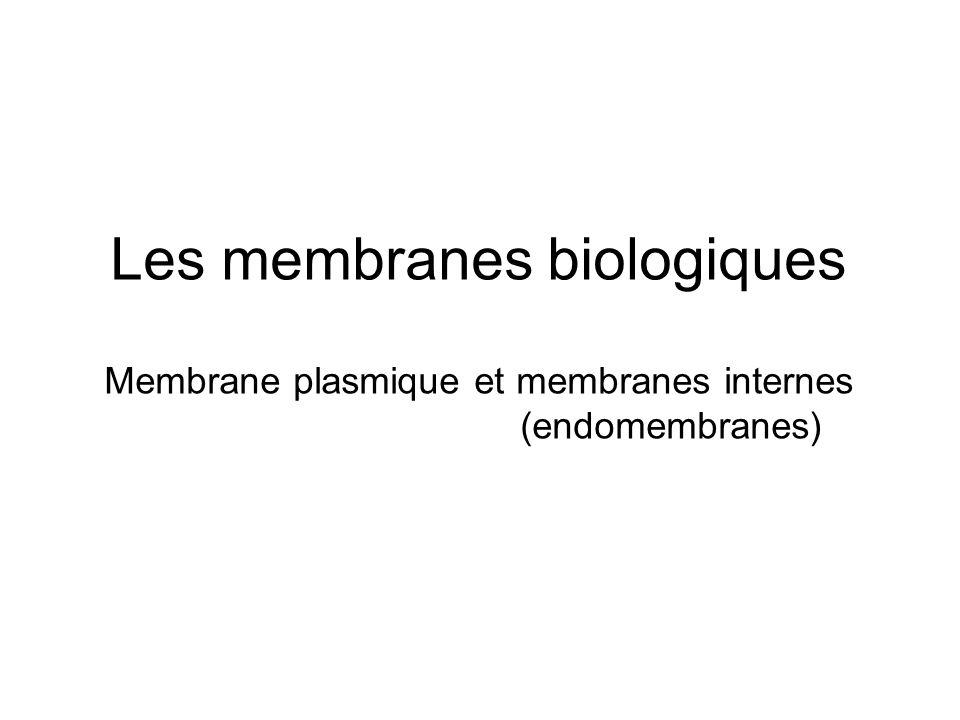 Les membranes biologiques