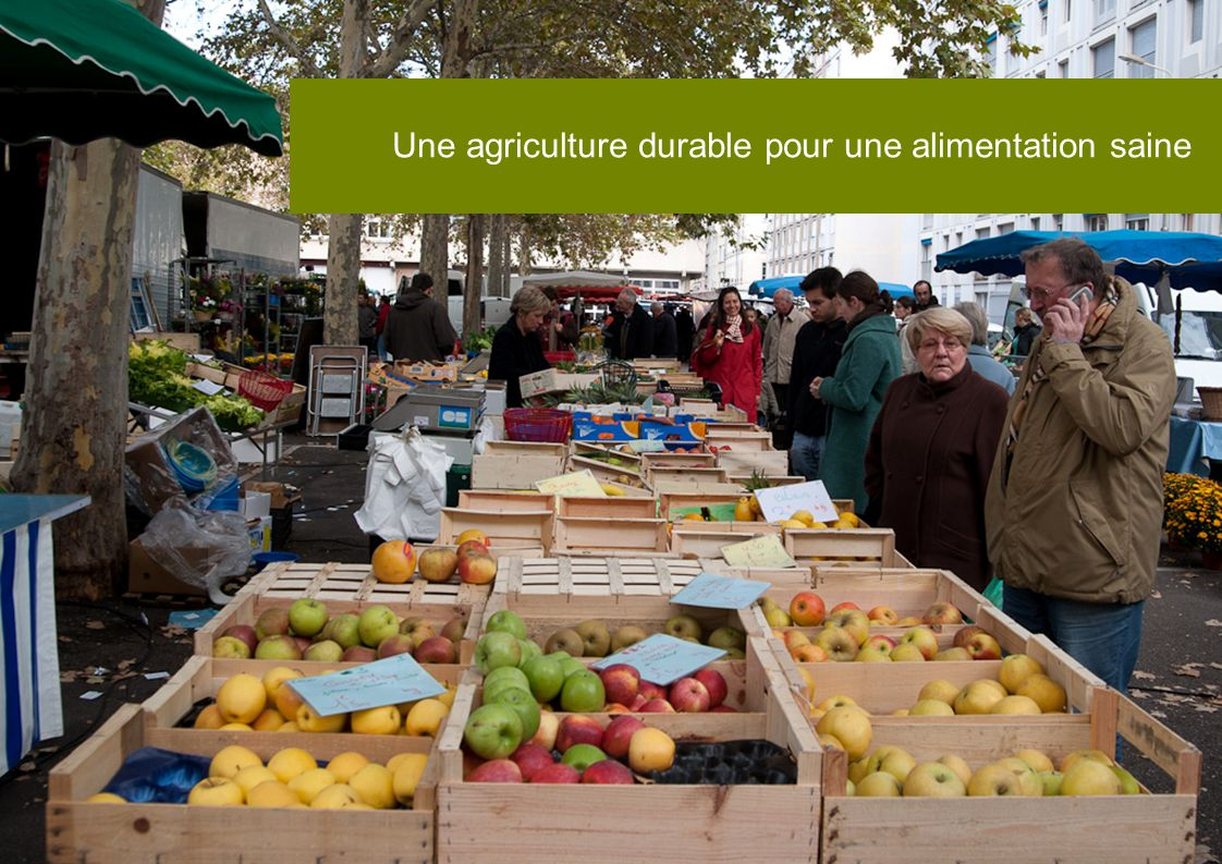 Une agriculture durable pour une alimentation saine
