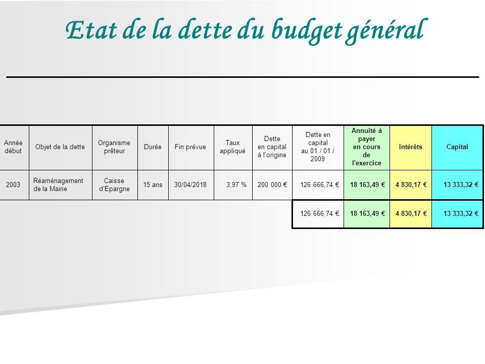 Etat de la dette du budget général