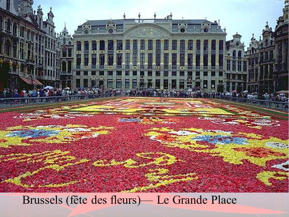 Brussels (fête des fleurs)— Le Grande Place