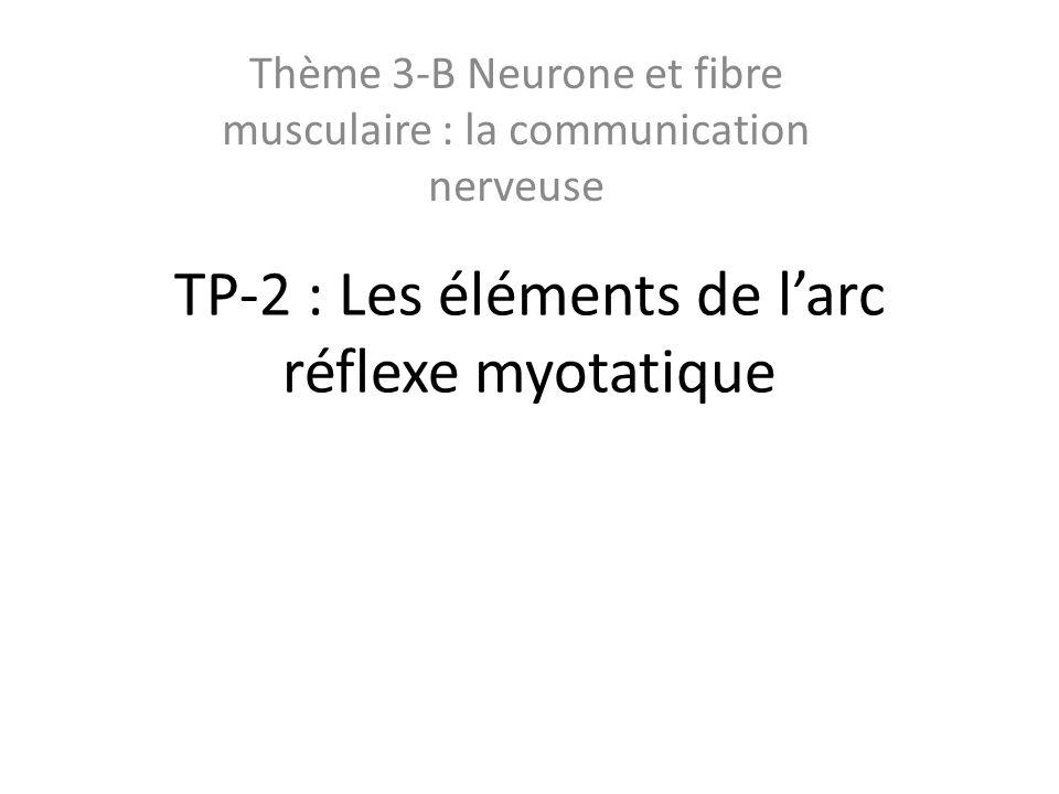 TP-2 : Les éléments de l'arc réflexe myotatique