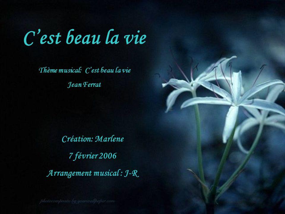 Thème musical: C'est beau la vie Arrangement musical : J-R