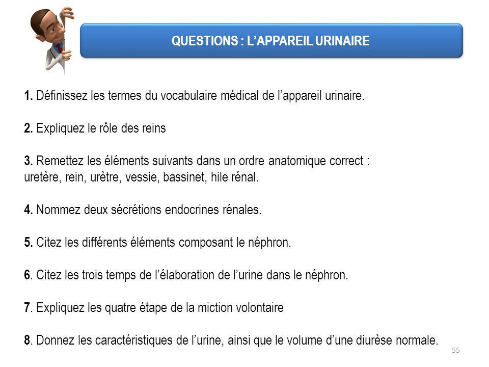 QUESTIONS : L'APPAREIL URINAIRE