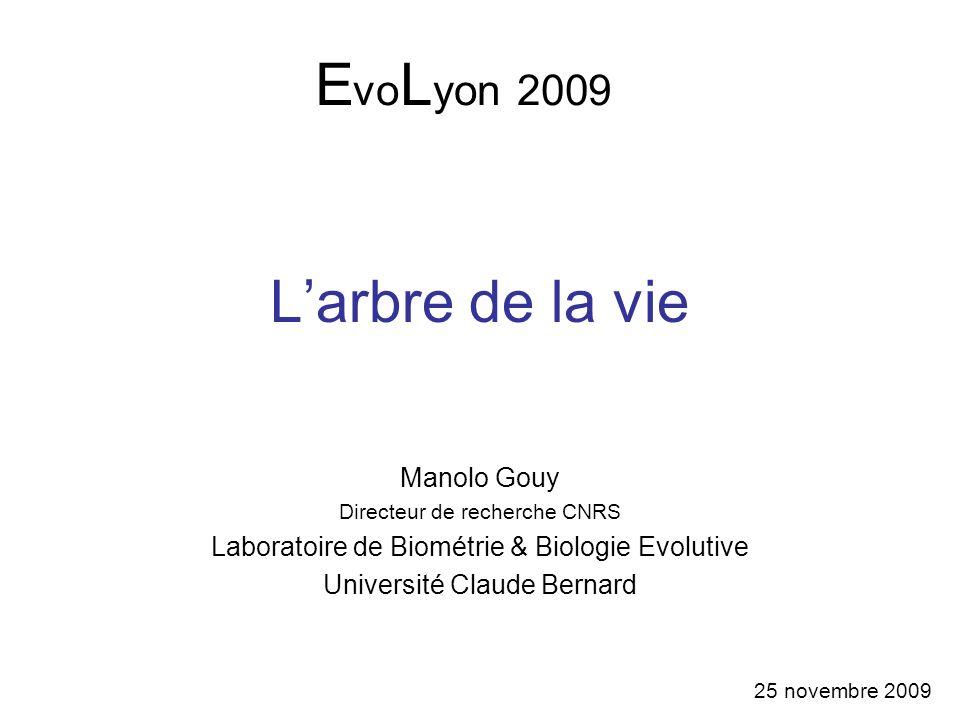 EvoLyon 2009 L'arbre de la vie Manolo Gouy