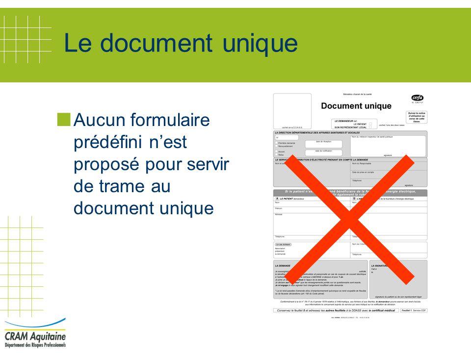 Le document unique Aucun formulaire prédéfini n'est proposé pour servir de trame au document unique.