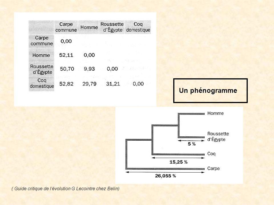 Un phénogramme ( Guide critique de l'évolution G Lecointre chez Belin)