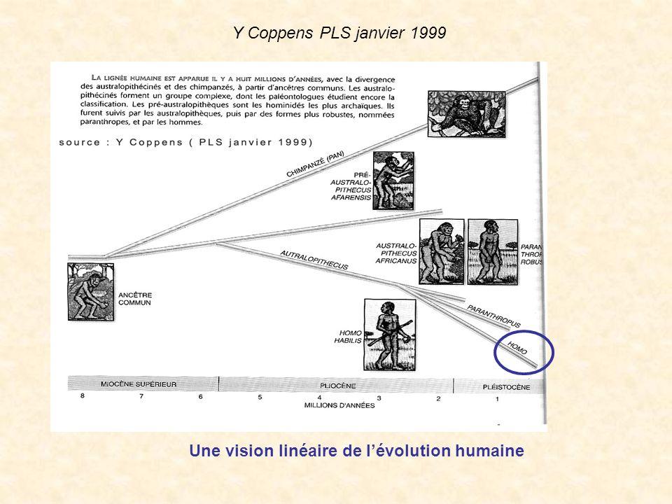 Y Coppens PLS janvier 1999 Une vision linéaire de l'évolution humaine