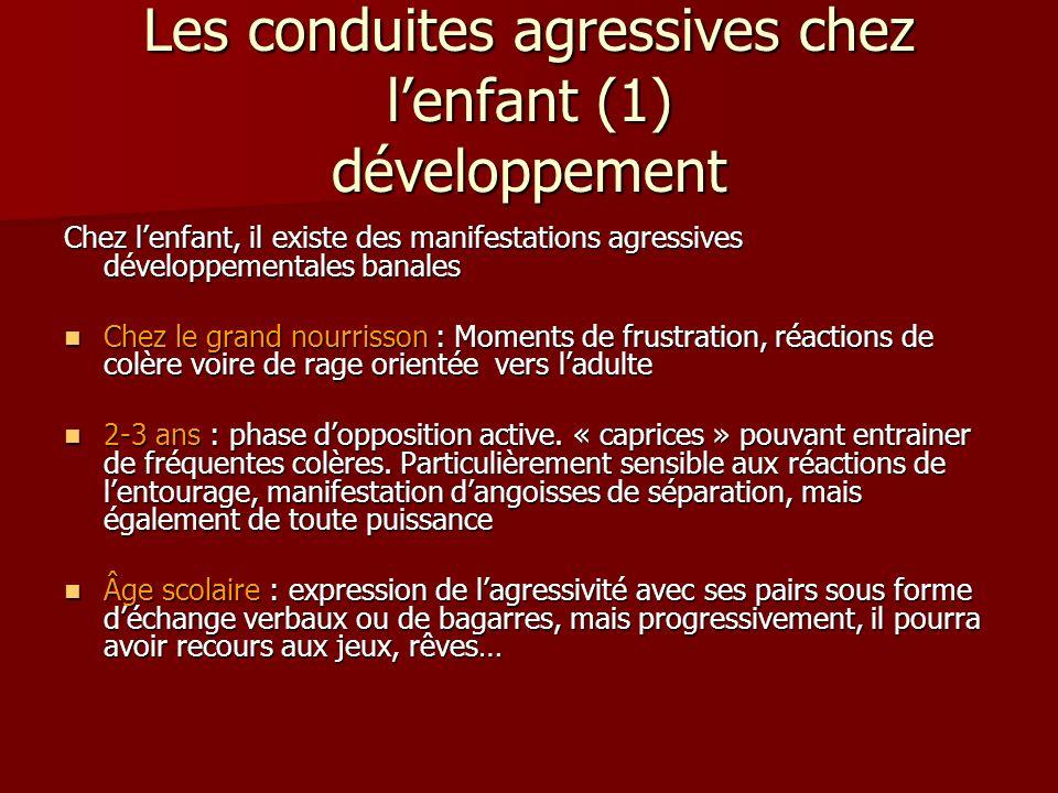 Les conduites agressives chez l'enfant (1) développement