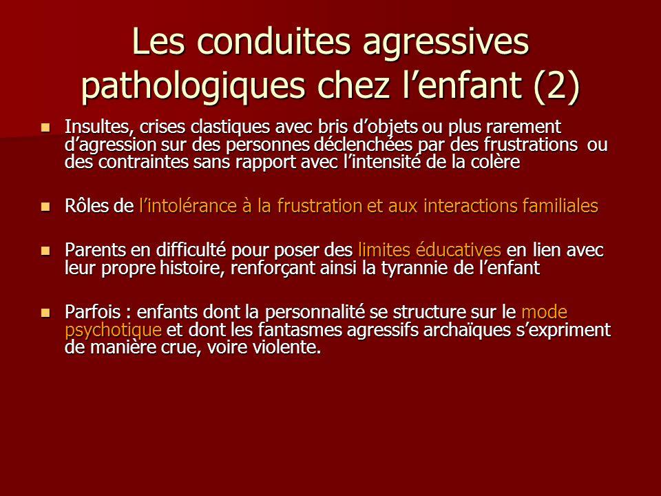 Les conduites agressives pathologiques chez l'enfant (2)