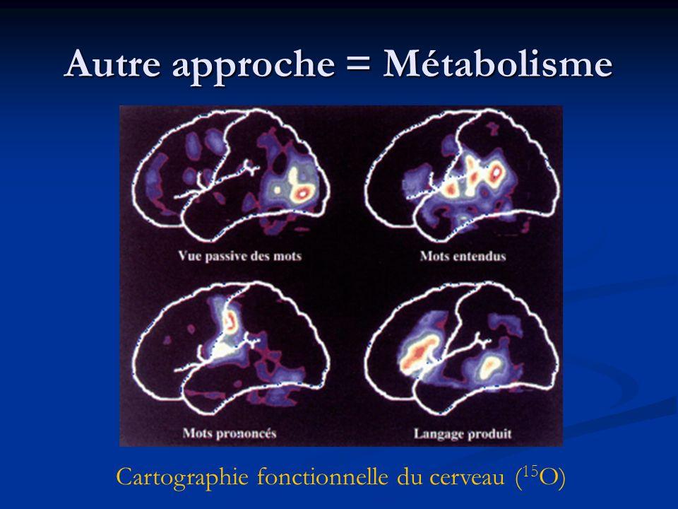 Autre approche = Métabolisme