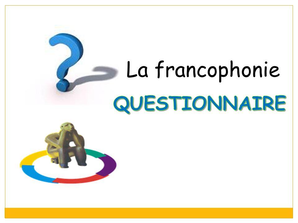 La francophonie questionnaire