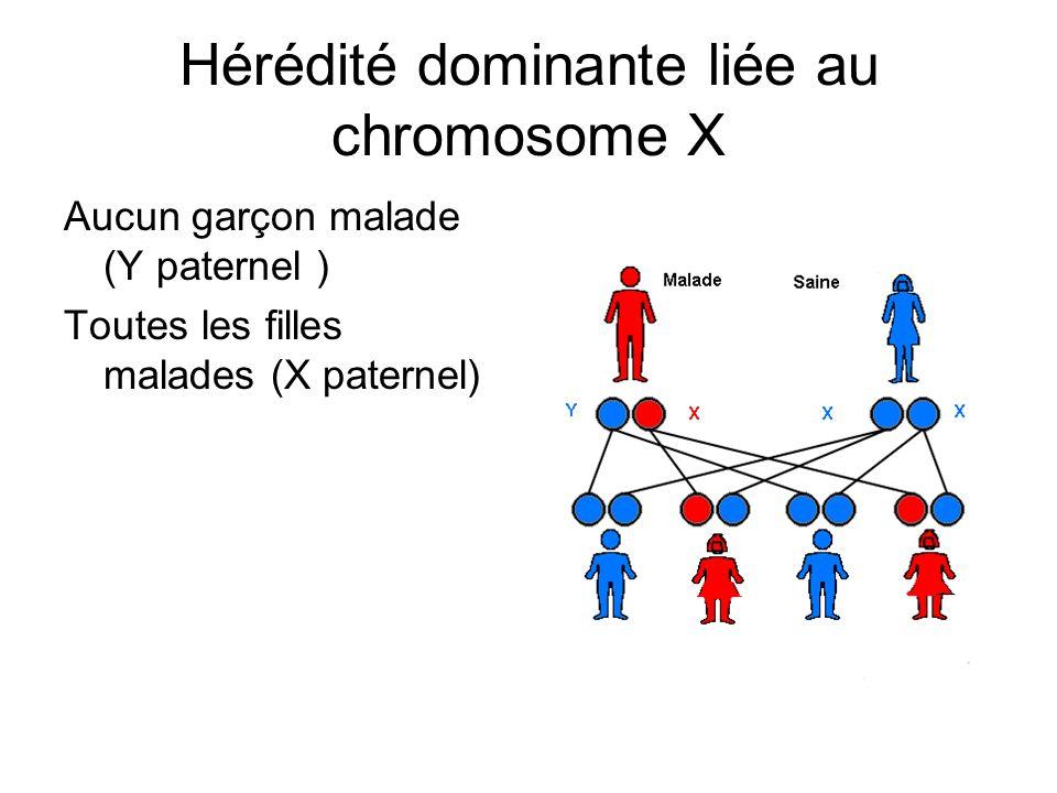 Hérédité dominante liée au chromosome X