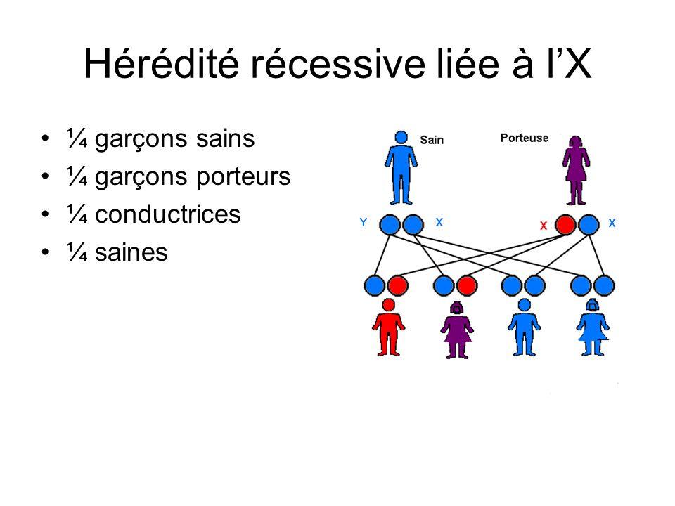 Hérédité récessive liée à l'X