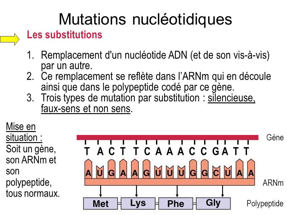 Mutations nucléotidiques