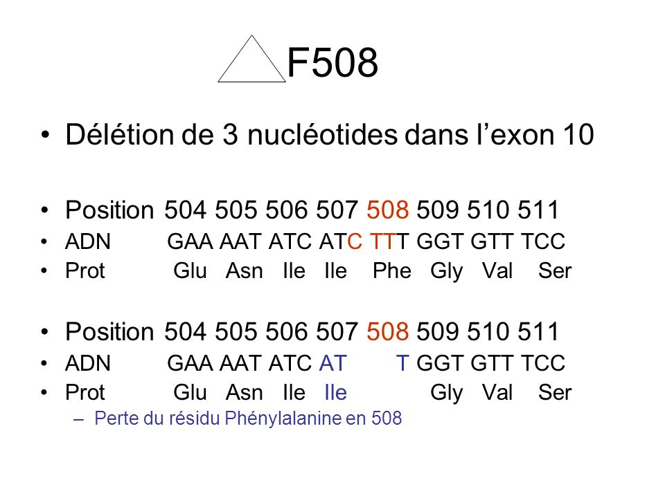 F508 Délétion de 3 nucléotides dans l'exon 10