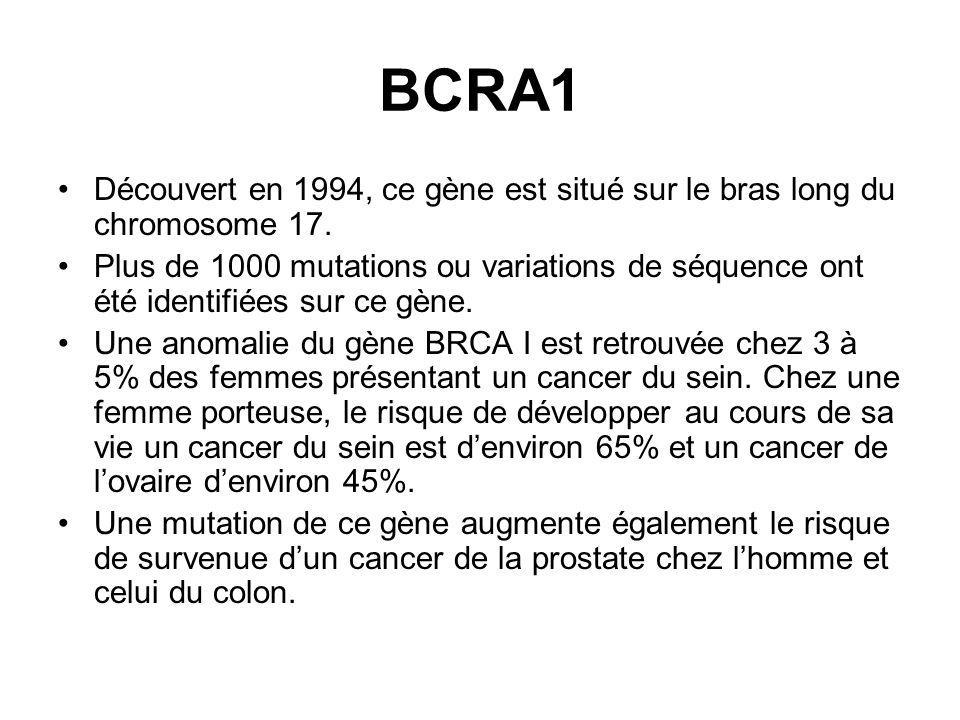 BCRA1Découvert en 1994, ce gène est situé sur le bras long du chromosome 17.