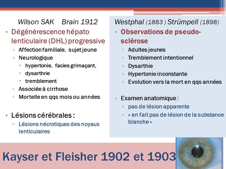 Kayser et Fleisher 1902 et 1903 Wilson SAK Brain 1912