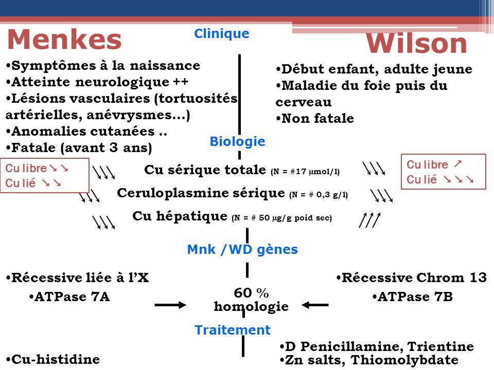 Menkes Wilson Symptômes à la naissance Atteinte neurologique ++