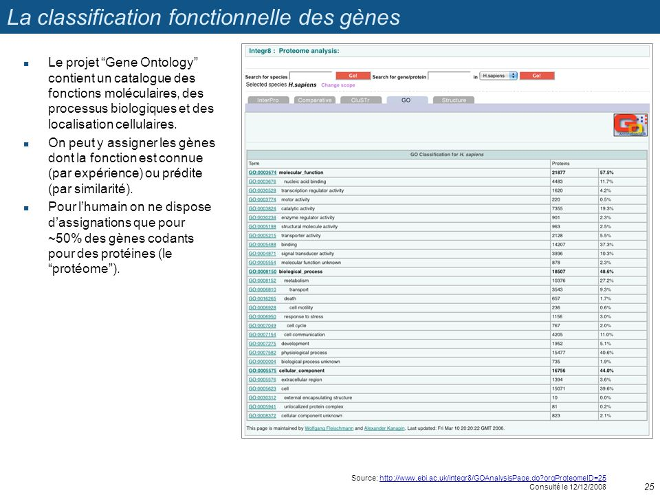 La classification fonctionnelle des gènes