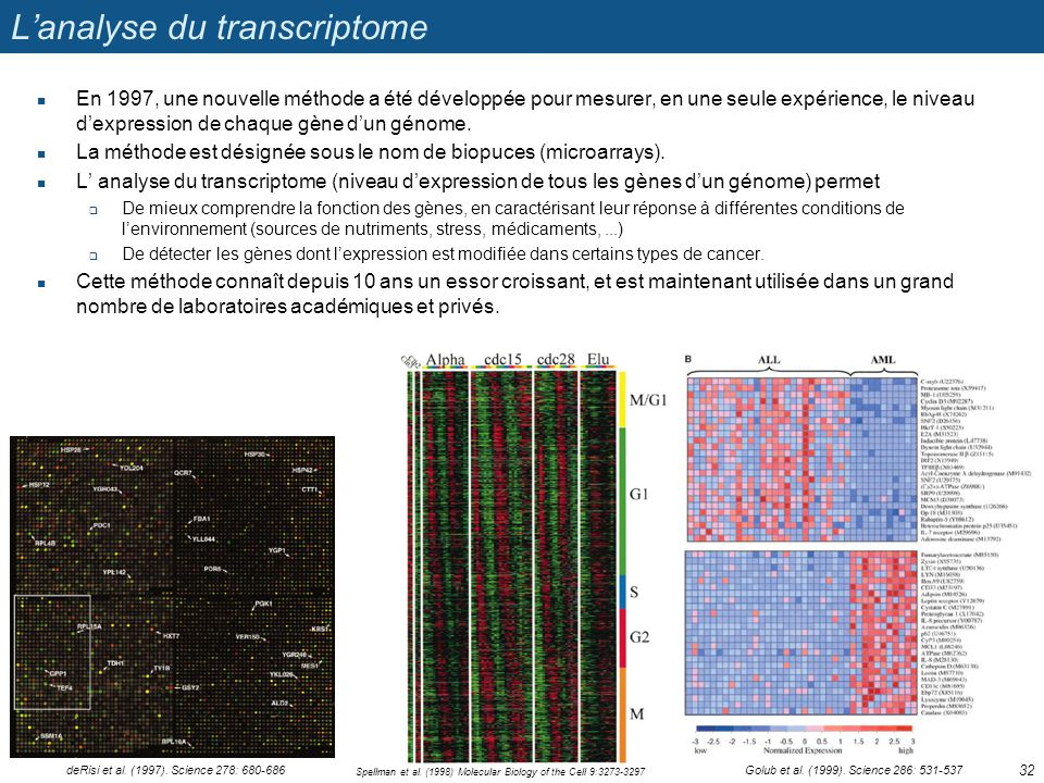 L'analyse du transcriptome