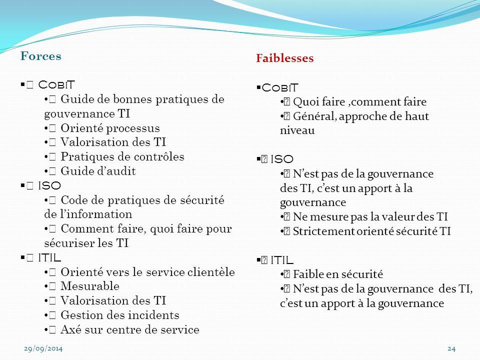 """"""" Guide de bonnes pratiques de gouvernance TI """" Orienté processus"""