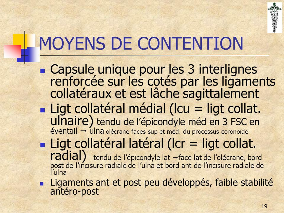 MOYENS DE CONTENTION Capsule unique pour les 3 interlignes renforcée sur les cotés par les ligaments collatéraux et est lâche sagittalement.