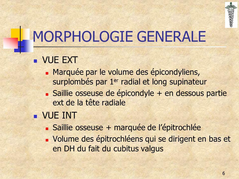MORPHOLOGIE GENERALE VUE EXT VUE INT