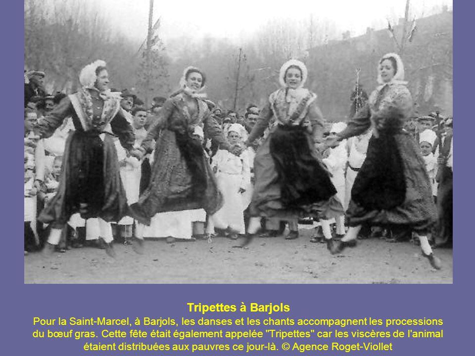 Tripettes à Barjols Pour la Saint-Marcel, à Barjols, les danses et les chants accompagnent les processions du bœuf gras.