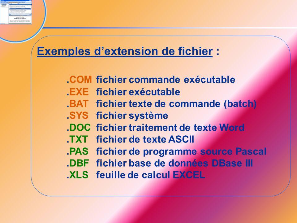 Exemples d'extension de fichier : .COM fichier commande exécutable