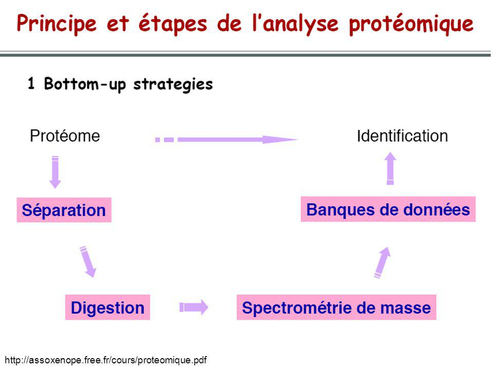 http://assoxenope.free.fr/cours/proteomique.pdf