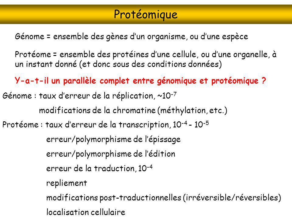 Protéomique Génome = ensemble des gènes d'un organisme, ou d'une espèce.