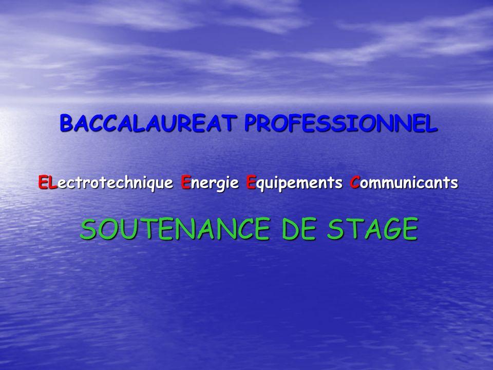 BACCALAUREAT PROFESSIONNEL ELectrotechnique Energie Equipements Communicants