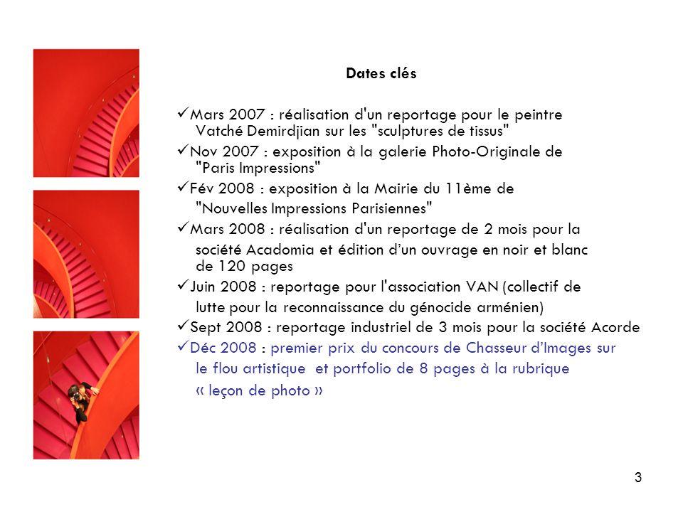 Dates clés Mars 2007 : réalisation d un reportage pour le peintre Vatché Demirdjian sur les sculptures de tissus