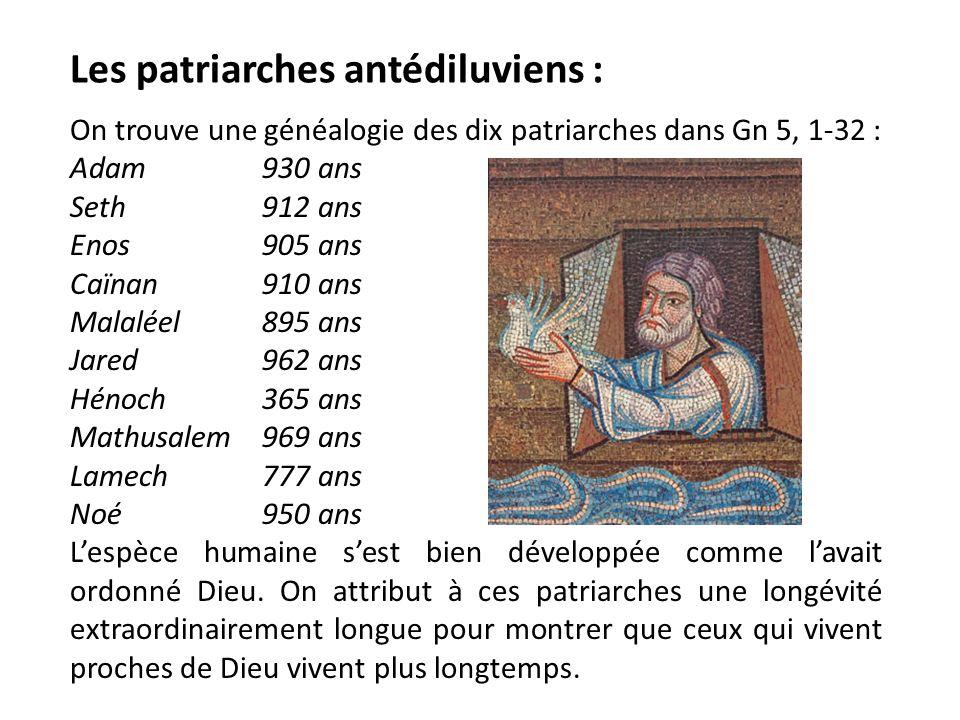 Les patriarches antédiluviens :