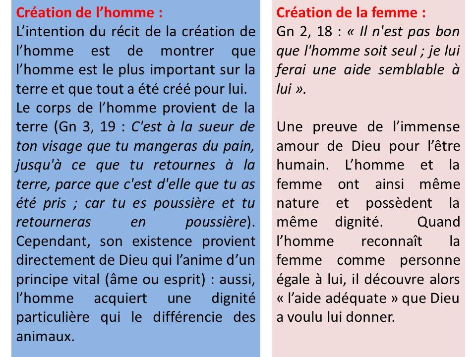 Création de l'homme :