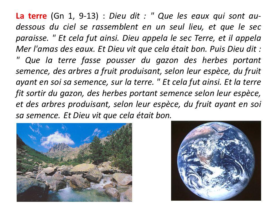 La terre (Gn 1, 9-13) : Dieu dit : Que les eaux qui sont au-dessous du ciel se rassemblent en un seul lieu, et que le sec paraisse.