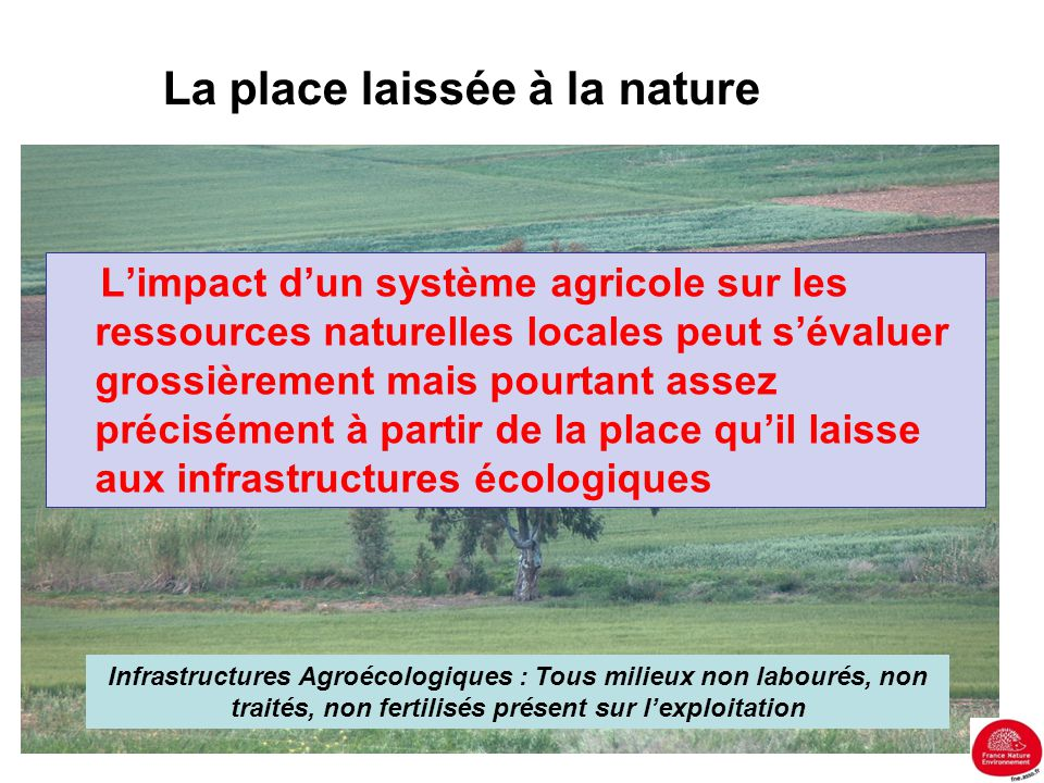 La place laissée à la nature