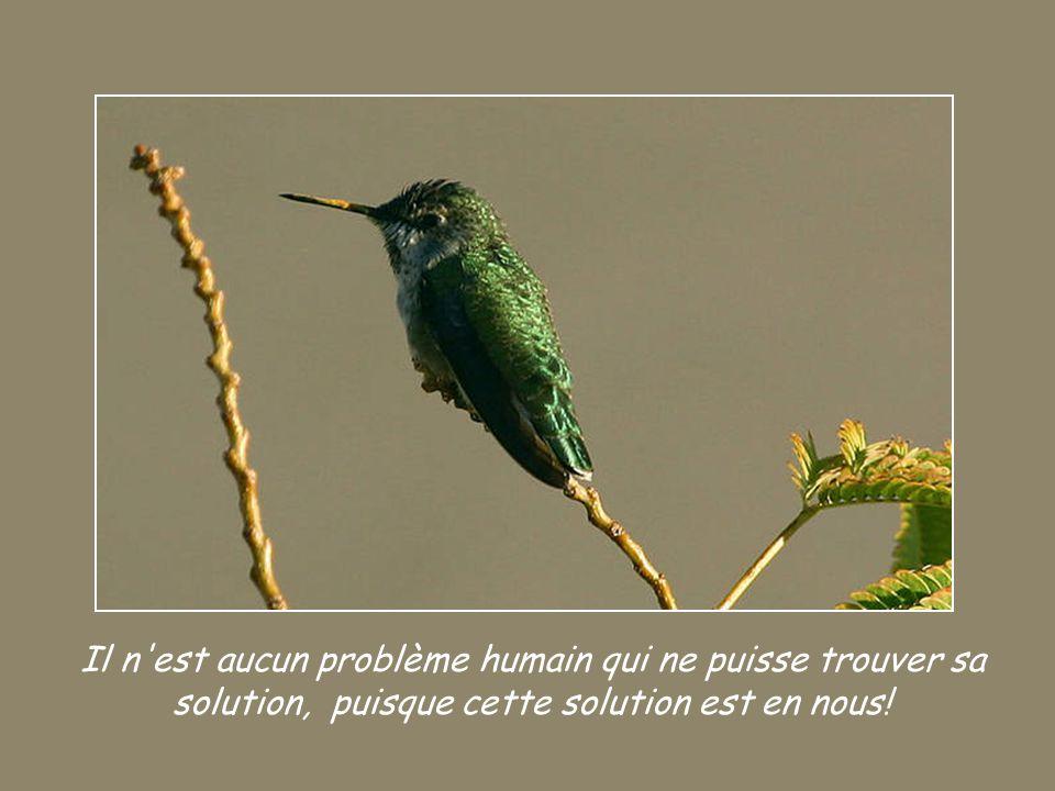 Il n est aucun problème humain qui ne puisse trouver sa solution, puisque cette solution est en nous!