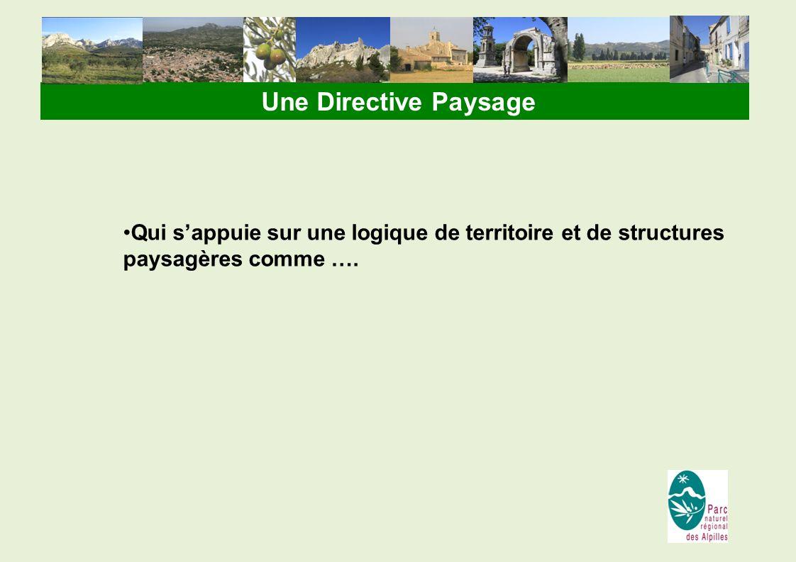 Une Directive Paysage Qui s'appuie sur une logique de territoire et de structures paysagères comme ….