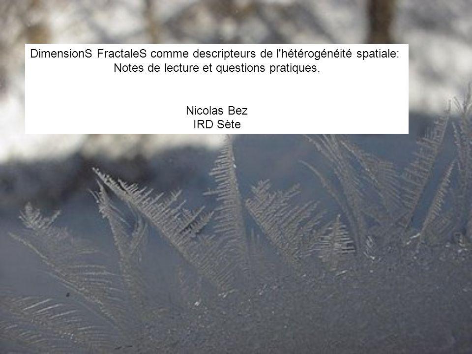 DimensionS FractaleS comme descripteurs de l hétérogénéité spatiale: Notes de lecture et questions pratiques.