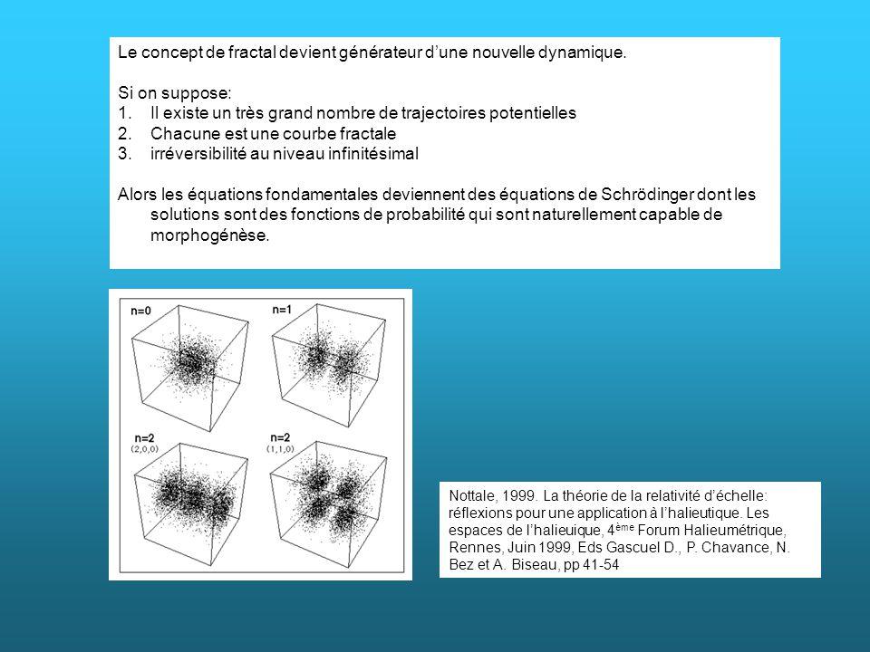 Le concept de fractal devient générateur d'une nouvelle dynamique.