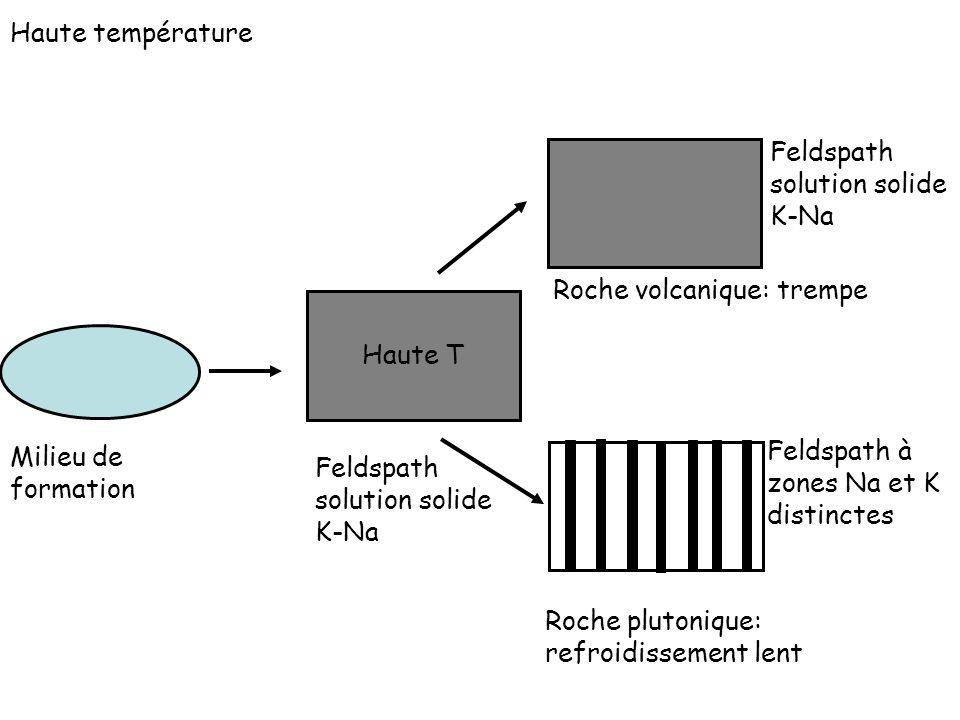 Haute température Feldspath solution solide K-Na. Roche volcanique: trempe. Haute T. Milieu de formation.
